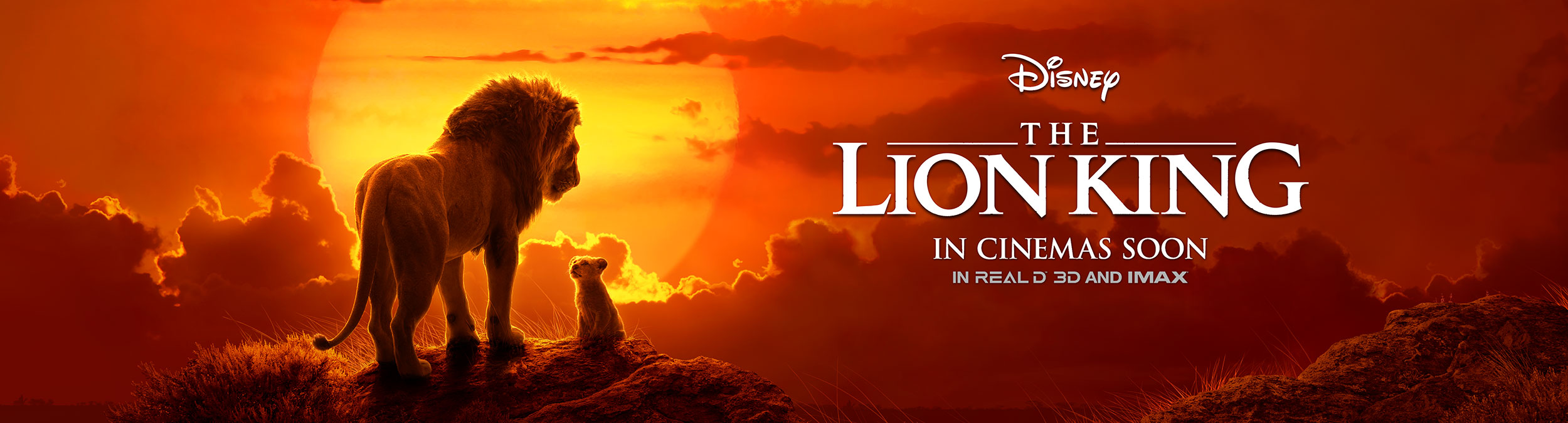 THE LION KING | INTL. PREMIERE WALL FINISHING & ILLUSTRATION