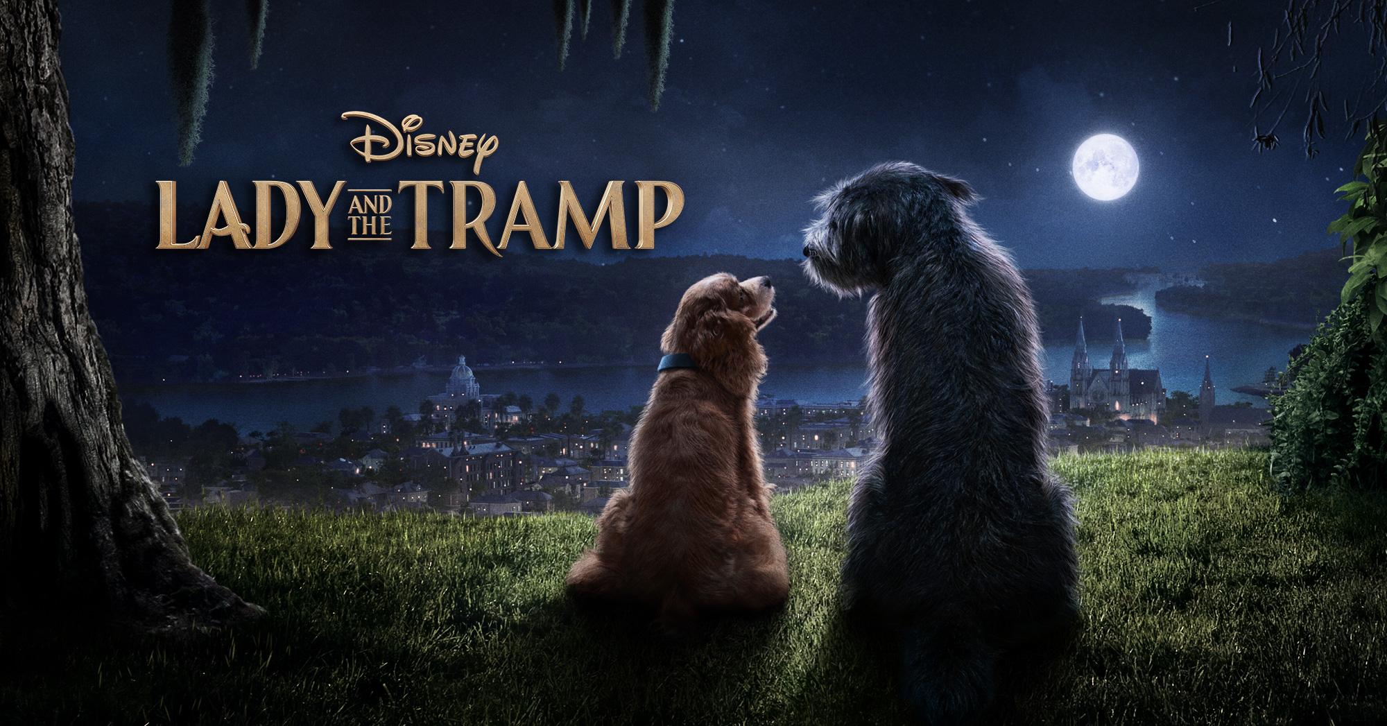 Lady and the Tramp | Disney+ Horz. Art Design, Finishing & Illustration
