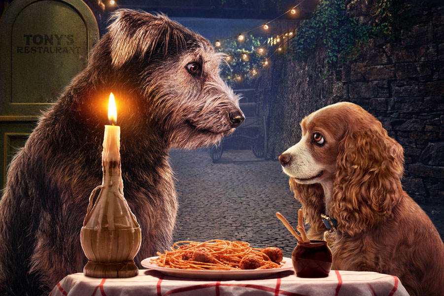 Lady and the Tramp Project
