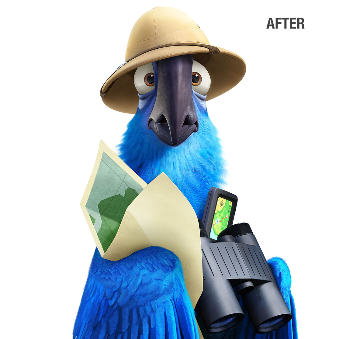 Rio 2 Blue After