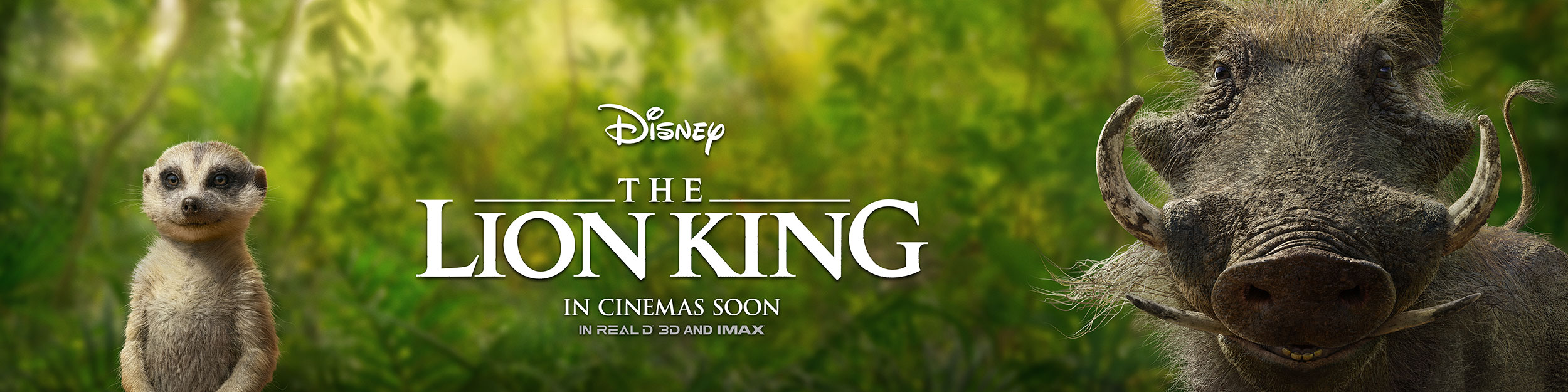 The Lion King | Intl. Outdoor Concept, Finishing & Illustration