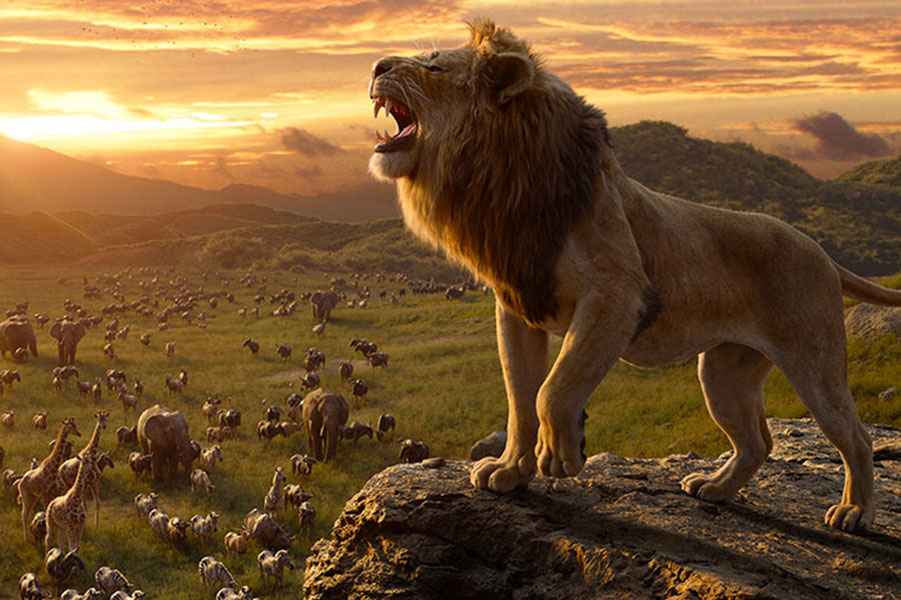 THE LION KING PROJECT